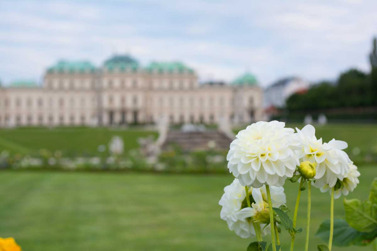 Vienna in the spring
